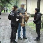 Inspekcja ds. ochrony zwierząt w akcji