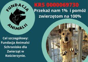 Baner promujący adopcje psów oraz przekazanie 1% podatku dla zwierząt w Kościerzynie