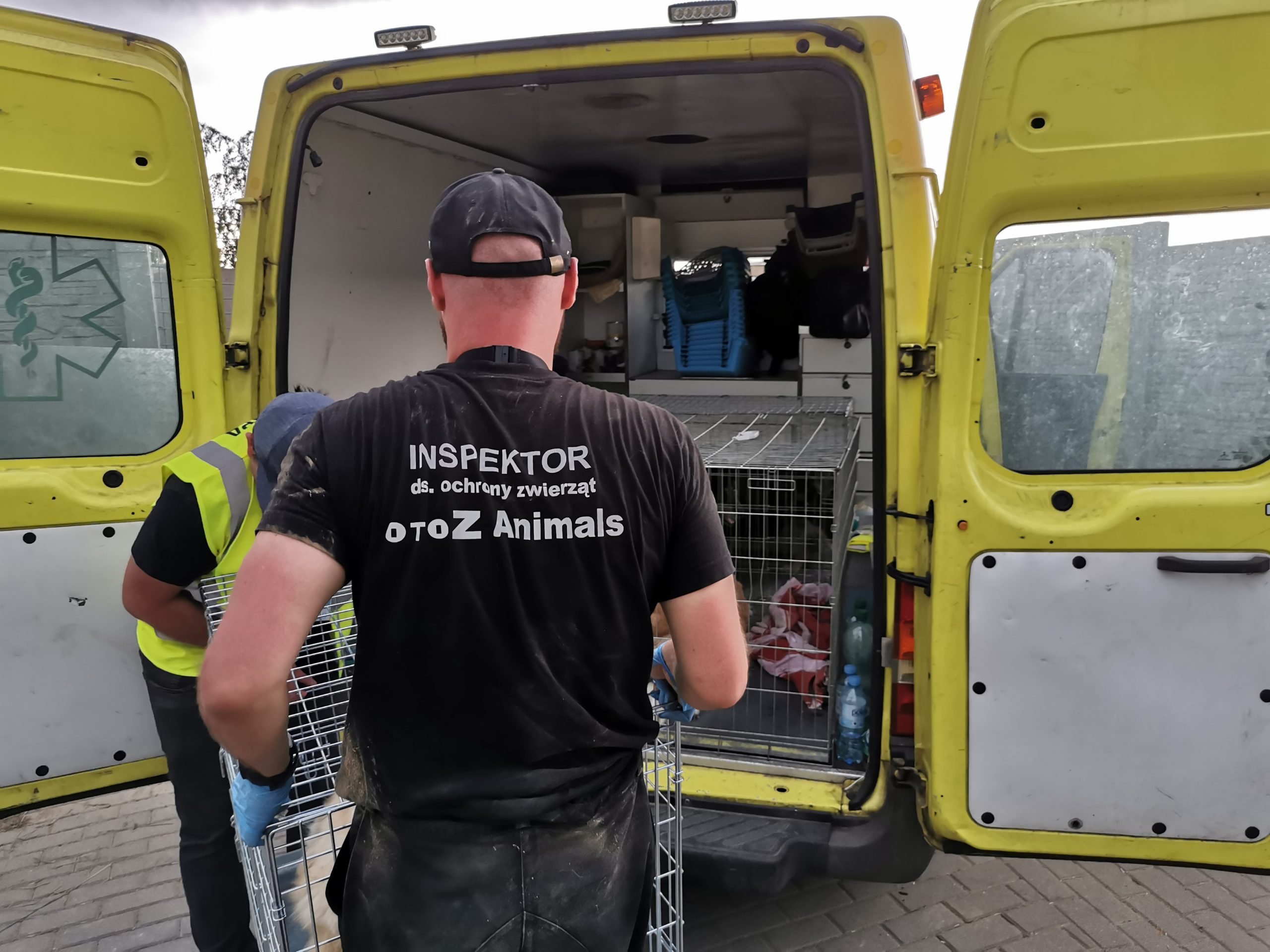 Inspektor Paweł Gebert niosący klatkę z psem w kierunku samochodu podczas interwencji w Radysach