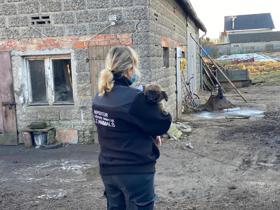 Zdjęcie inspektorki trzymającej na rękach szczeniaka, na tle budynku.
